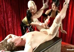 Lorelei Lee, DragonLily, Maitresse Madeline and Barney in amazing fem-dom group sex video
